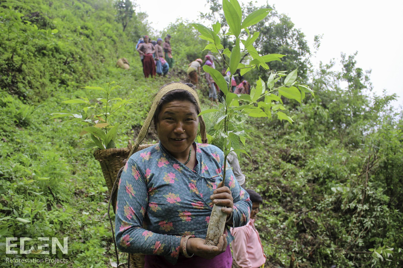 DELAYON Eyewear Planting Trees Eden Forestation Project